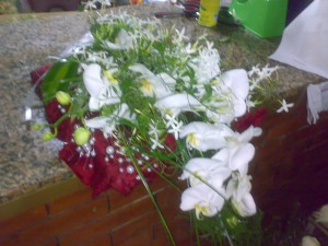 Ramo di phalaenopsis